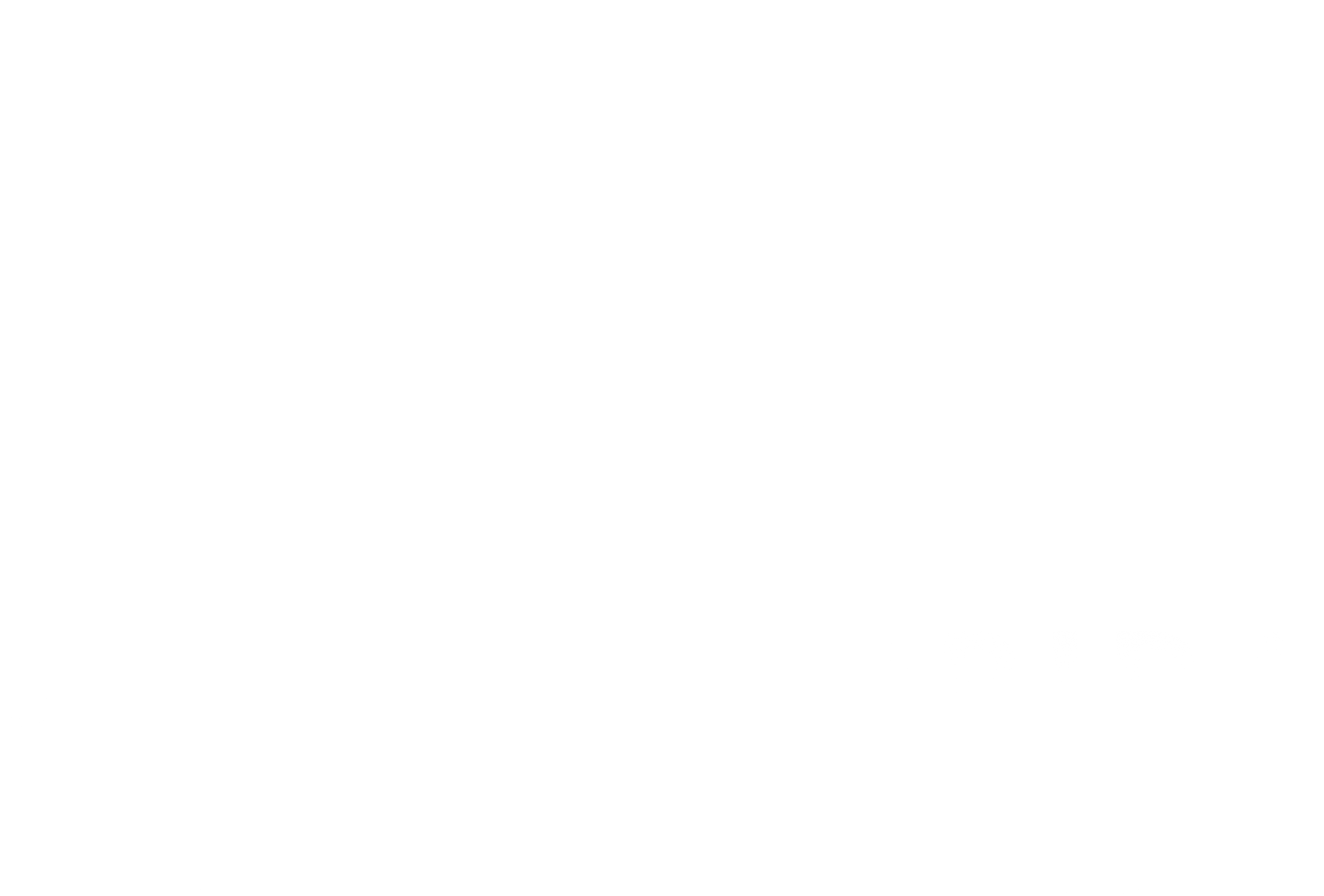 logo & web design: South Florida ENT Associates