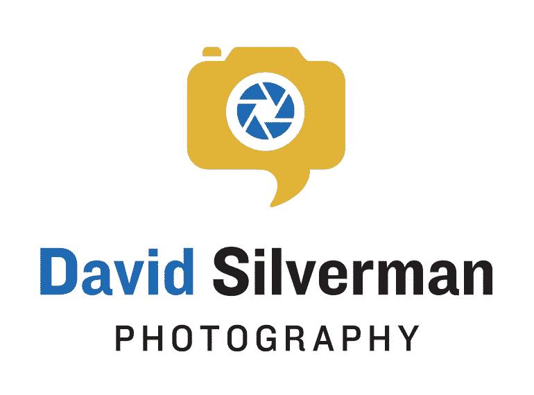 logo: David Silverman