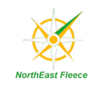 logo: NorthEast Fleece before