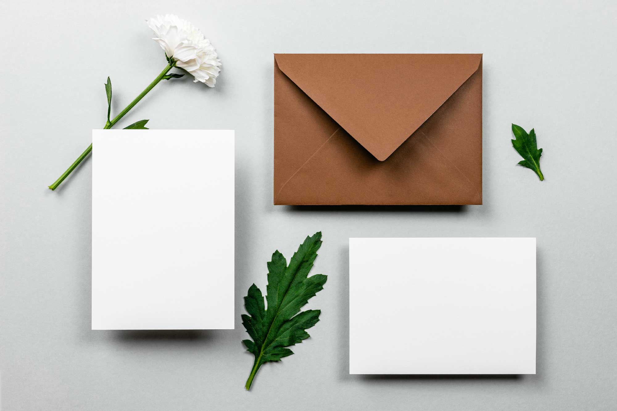 Envelope and notes